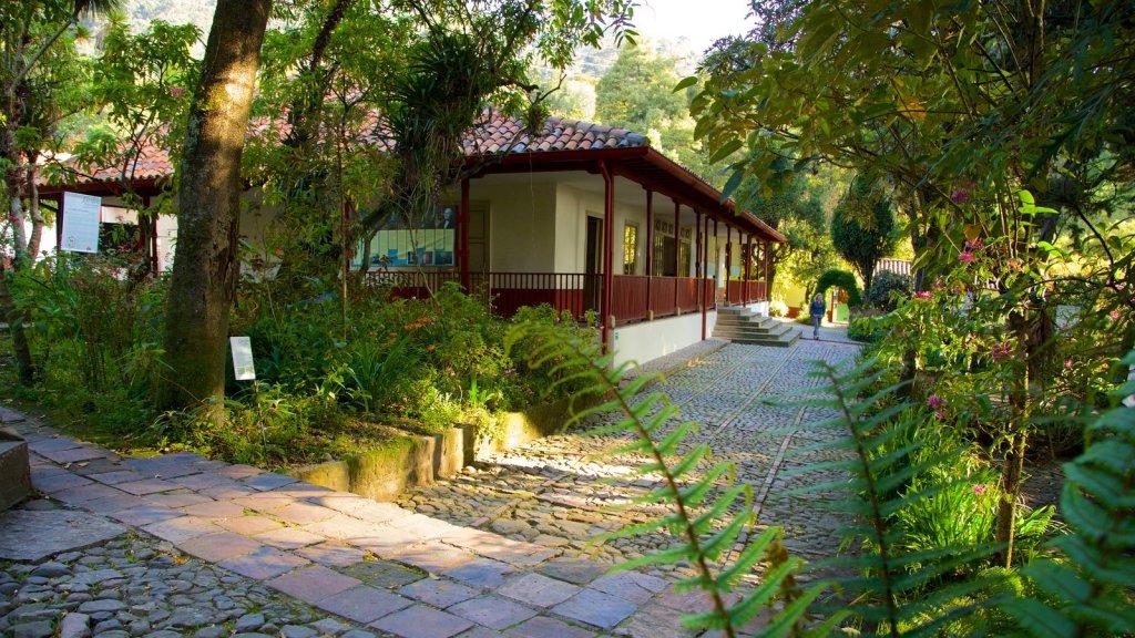 Museus em Bogotá: Museu Casa Quinta de Bolivar