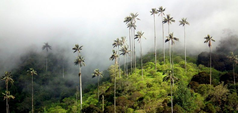 Salento, na Colômbia