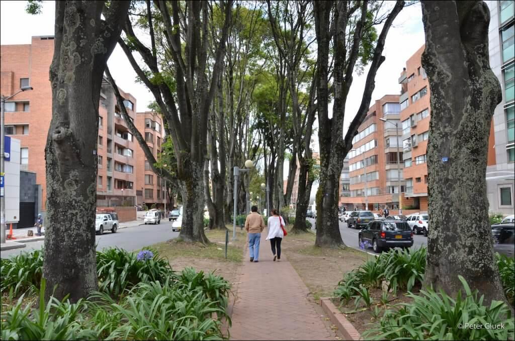 Passeio pelos jardins de Bogotá no inverno